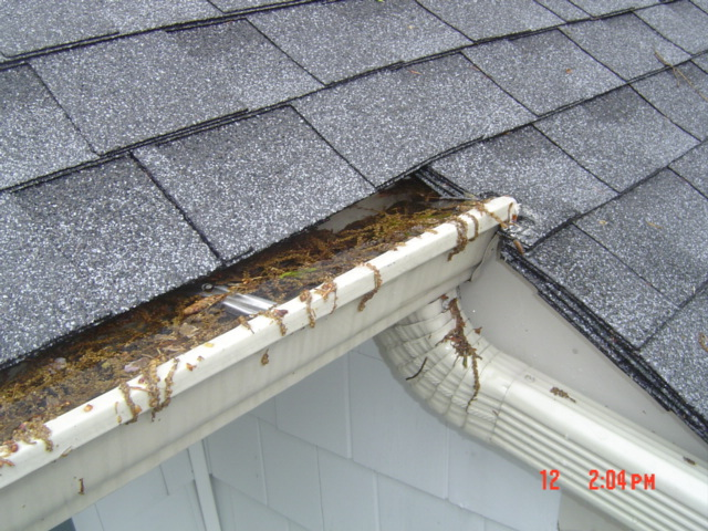 Nassau Gutters Cleaning